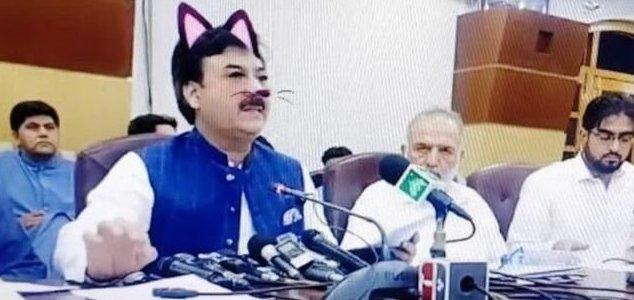 Filtro de gato transforma conferência em comédia