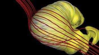 Estamos vivendo em um croissant gigante desinflado?